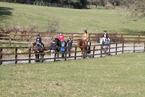 Group Horse Riding